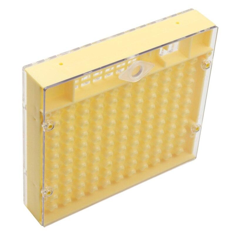 10 個プラスチック蜂クイーンボックス女王飼育ボックスは女王蜂ツール養蜂ツールプラスチック耐久性のある害ません女王蜂  グループ上の ホーム&ガーデン からの 養蜂道具 の中 3