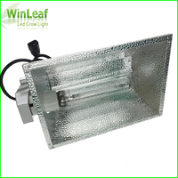 600W 1000W Dimming HPS Grow Light Sodium Lamp with Double End High Pressure Sodium Especially Suitable for Commercial Greenhouse