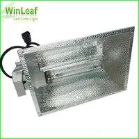 600 Вт HPS растет свет натрия лампа с двойной конец высокого давления натрия особенно подходит для коммерческих парниковых