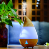 Bluetooth Air Humidifier Essential Oil Diffuseur Huile Essentiel 7 Colors LED Sleep Light Humidificador Ultrasonico AJ