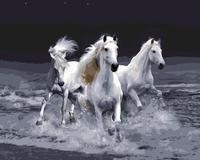 MaHuaf-j449 Verbazingwekkende Galopperende Paarden foto schilderen nummers diy digitale canvas olieverf home decor