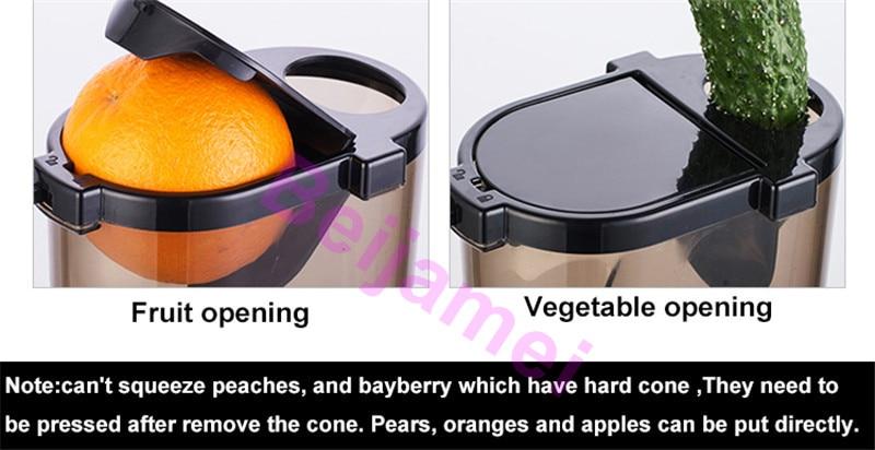 fruit juicer details 1