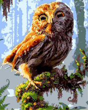DIY Frameless Pictures Painting By Numbers of Owl