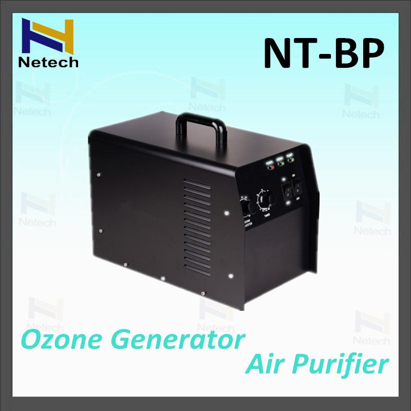 6g Hr Swimming Pool Water Treatment Oxygen Source Portable Ozone Generator In Air Purifiers From