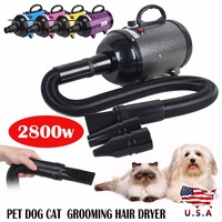 2800W Low Noise Hair Dryer For Dogs Pet Dog Cat Grooming Dryer Blower Variable Speed / Heat Pink Pruple Black Yellow Blue