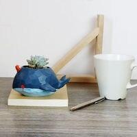 Creative Blue Whale Shape Resin Flower Pot Succulent Planter For Home Decoration