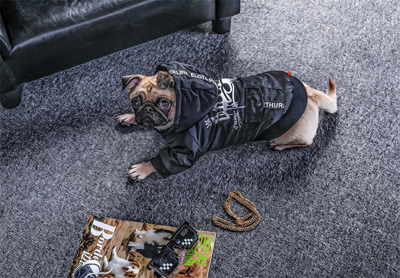 Labrador large dog clothes winter (1)