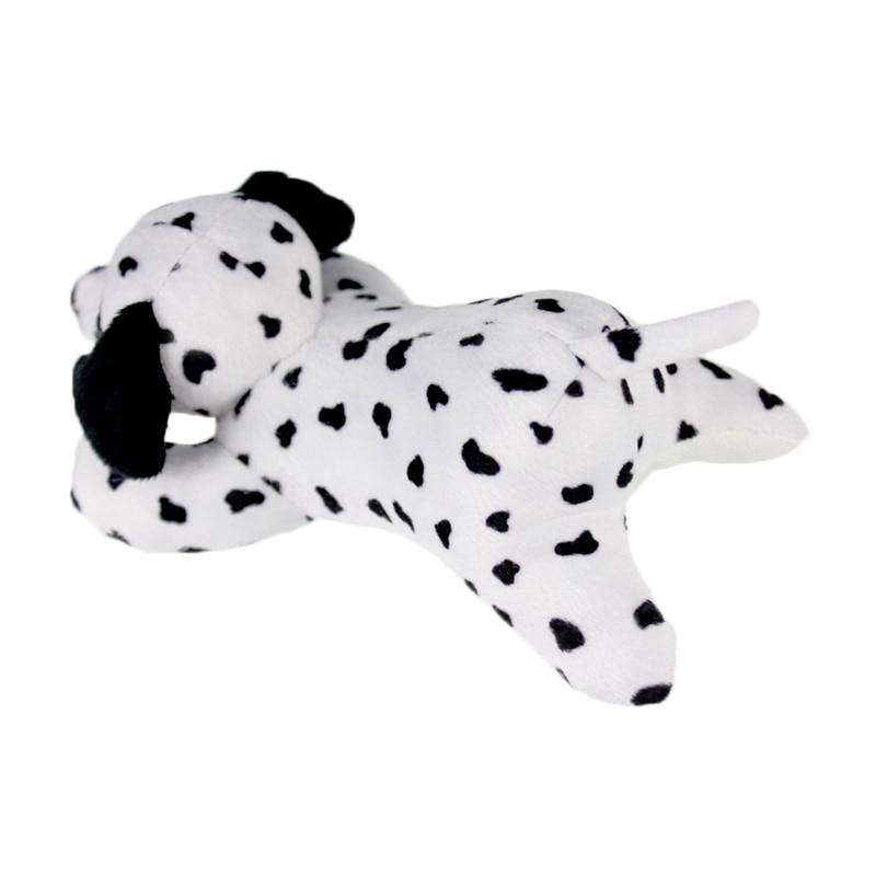 dalmatian dog_3