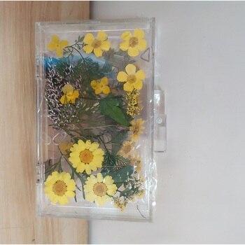 Women Evening Bags Flower Wedding Party Pearl Flower Bride Handbag Crossbody Clear Hard Box Clutch Transparent Chain Bag