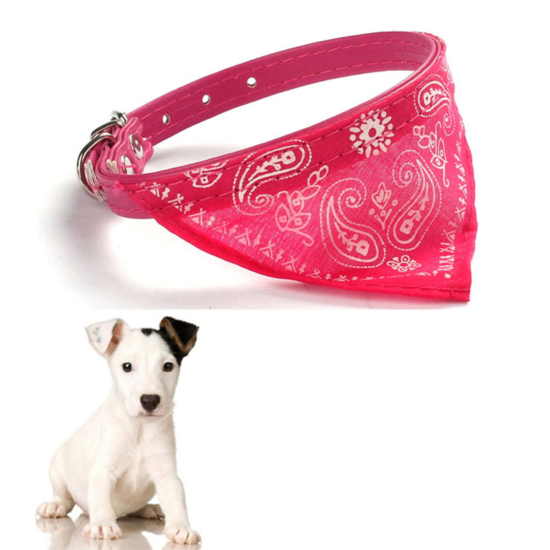 2016 collar for small puppy pet products