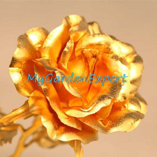 100pcs Rare Golden Rose Seeds Bonsai Flower Seeds Home Garden Rose Flower Seeds Potted Plant Free Shipping
