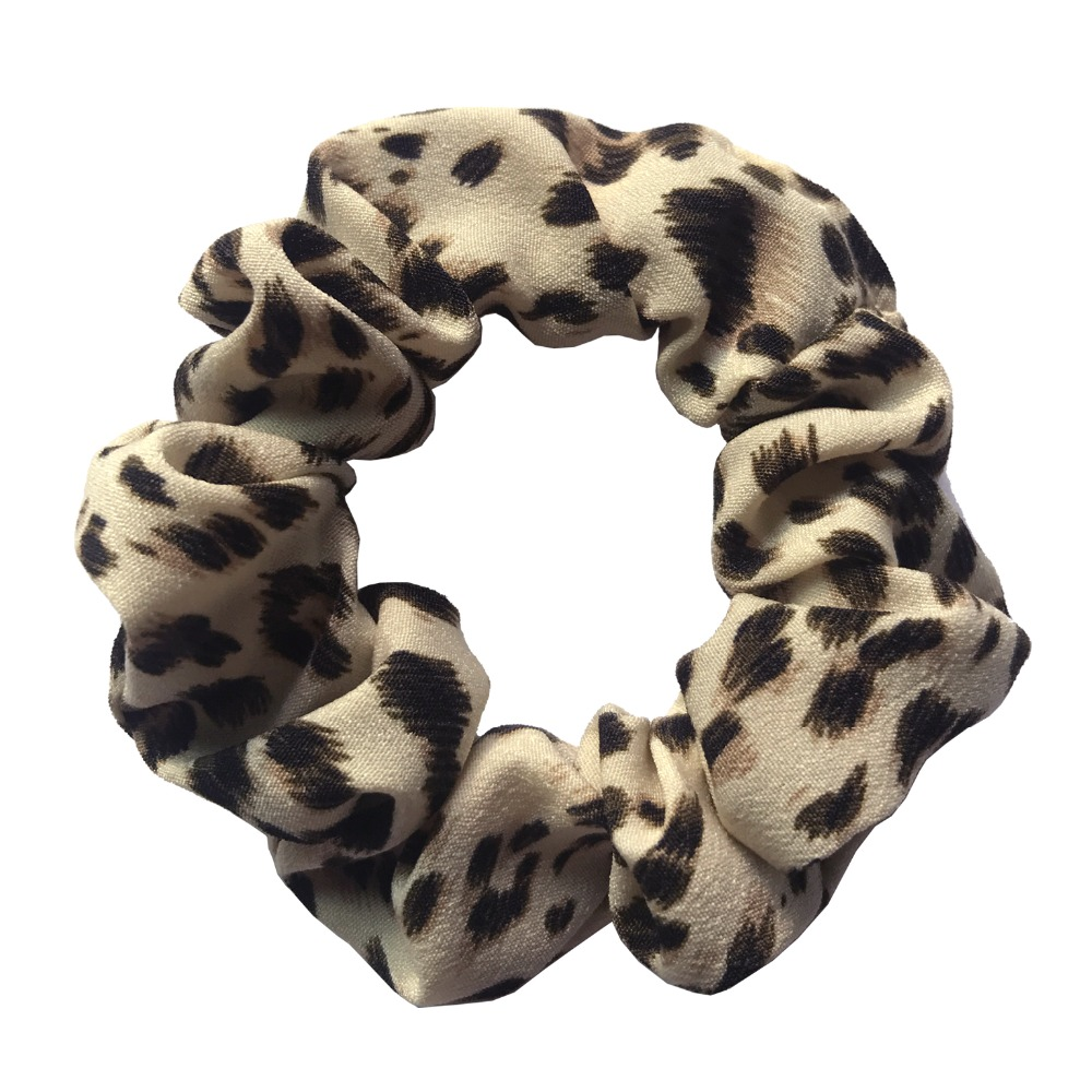 leopard 028
