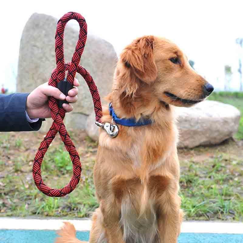 Sqinans Strong Nylon Dog Leash 2.5cm Diameter Pet Traction Lead For Large Breed 120cm Length Training Big Dog Tibetan Leashes