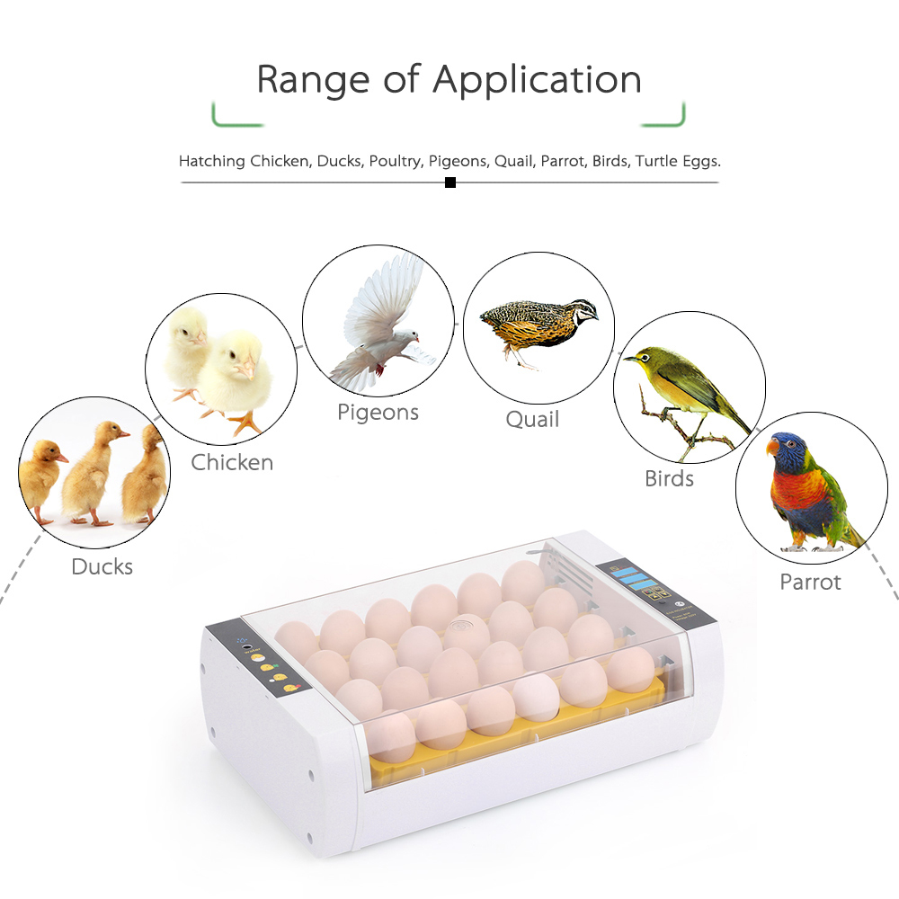 US $81 57 41% OFF|24 Eggs Intelligent Automatic Egg Incubator Temperature  Control Hatcher for Hatching Chicken Duck Bird Quail Poultry AC110 220V-in