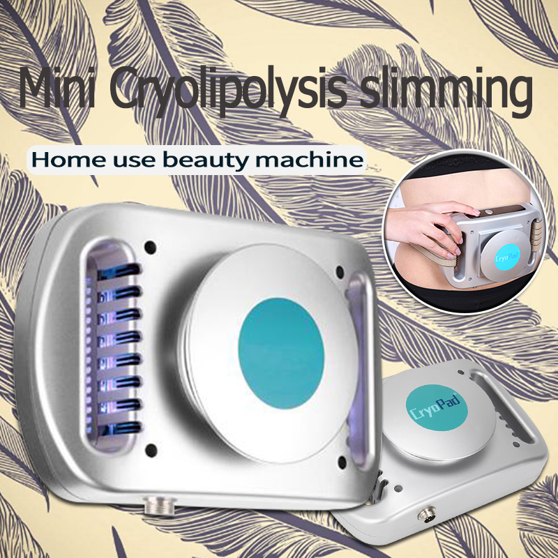 Reduce Fat Machine For  Weight Loss Lipo Anti Cellulite Dissolve Fat Cold Therapy Cellulite Removal