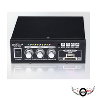 High Quality 13W 13W Card Car Amplifier Broadcast Constant Pressure Home Theater 12V External Antenna Auto