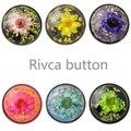 D02596 flores secas más nuevo botón rivca botón de botón a presión de 18mm pulsera de cada producto es único