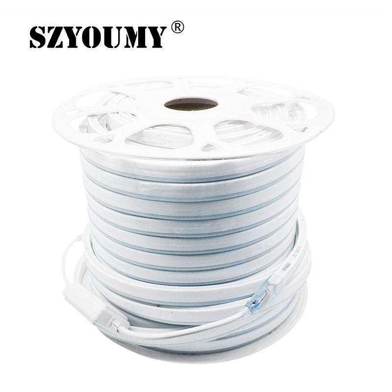 220V 12V RGB LED Neon Strip Light 80Led/m 5050 Waterproof Flexible Led Rope 10m 20m 30m 50m for Indoor Outdoor + Power Plug