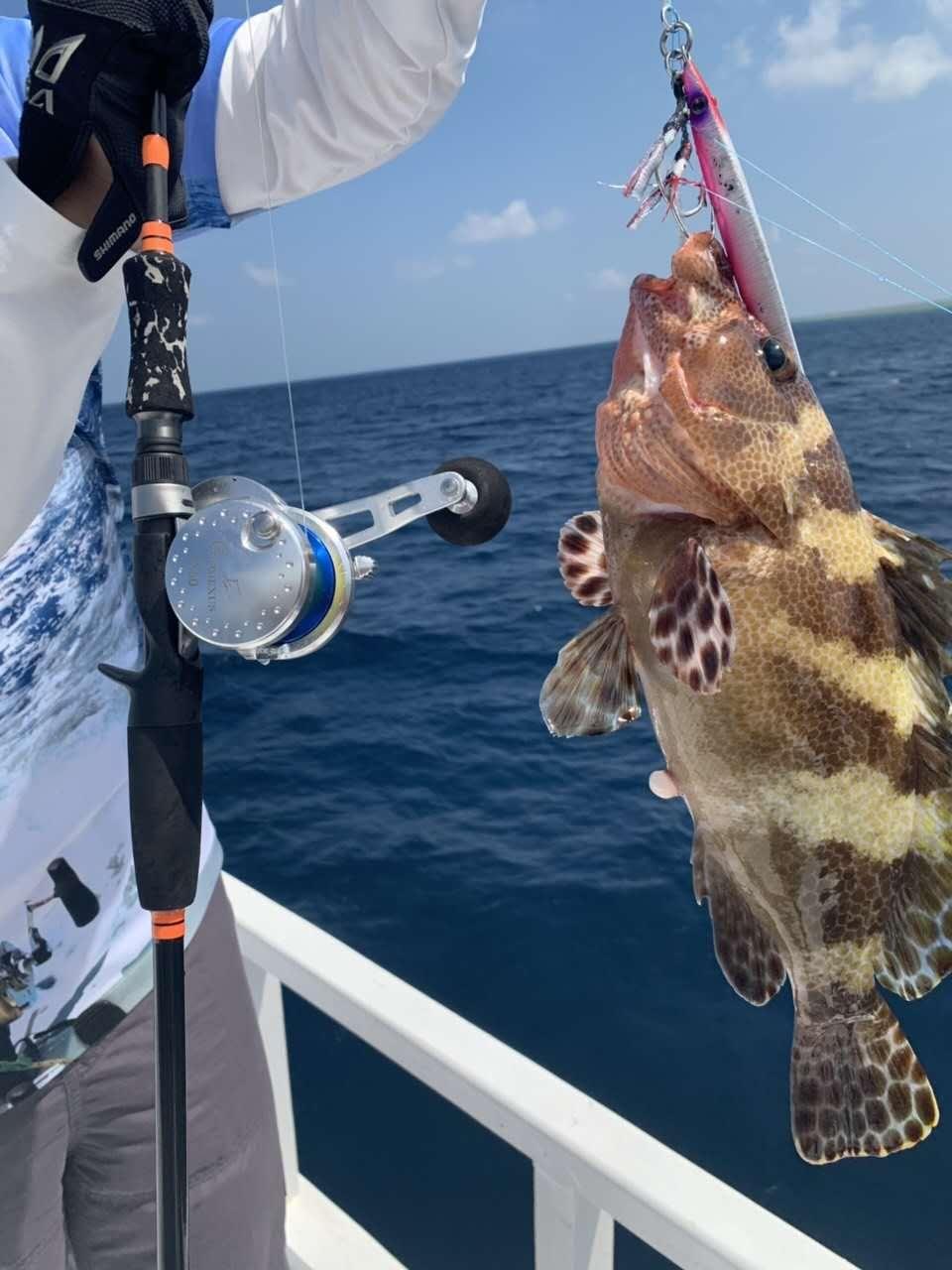 Gomexus Fishing Slow Jigging Reel High Speed Narrow Spool 7.1:1 Sea Tournament Big Game 30KG Super Light Perfect Right Left Reel