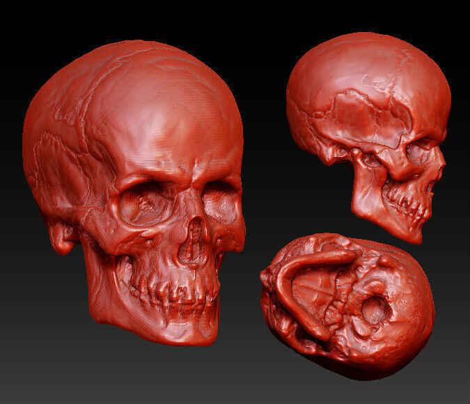3D modell für cnc-maschine in STL-format 4 achsen relief/computer skulptur Die skeleton