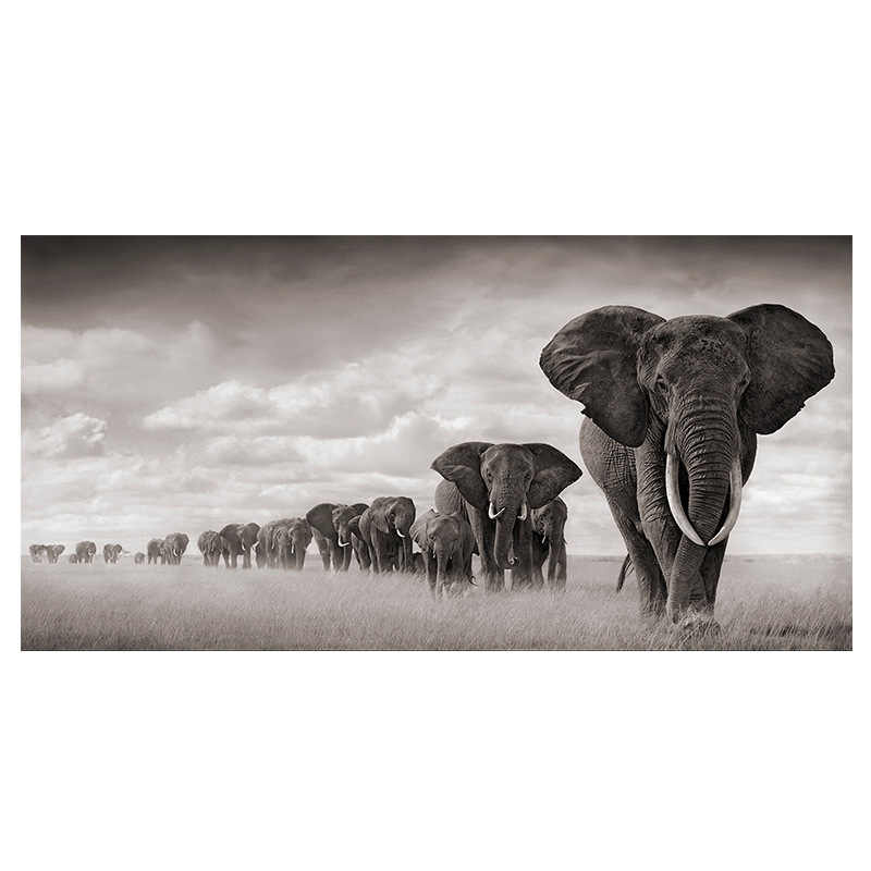 Africa Elephant family migrate Canvas Paintings Scandinavia Poster Prints for Living Room bedroom decor Cuadros Wall Art Picture