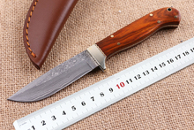 EDC Knives Rescue Tools High QualitCollect Damascus Fixed Blade Knives Rosewood Handle Camp Survival Knives Hunting Knife Multi