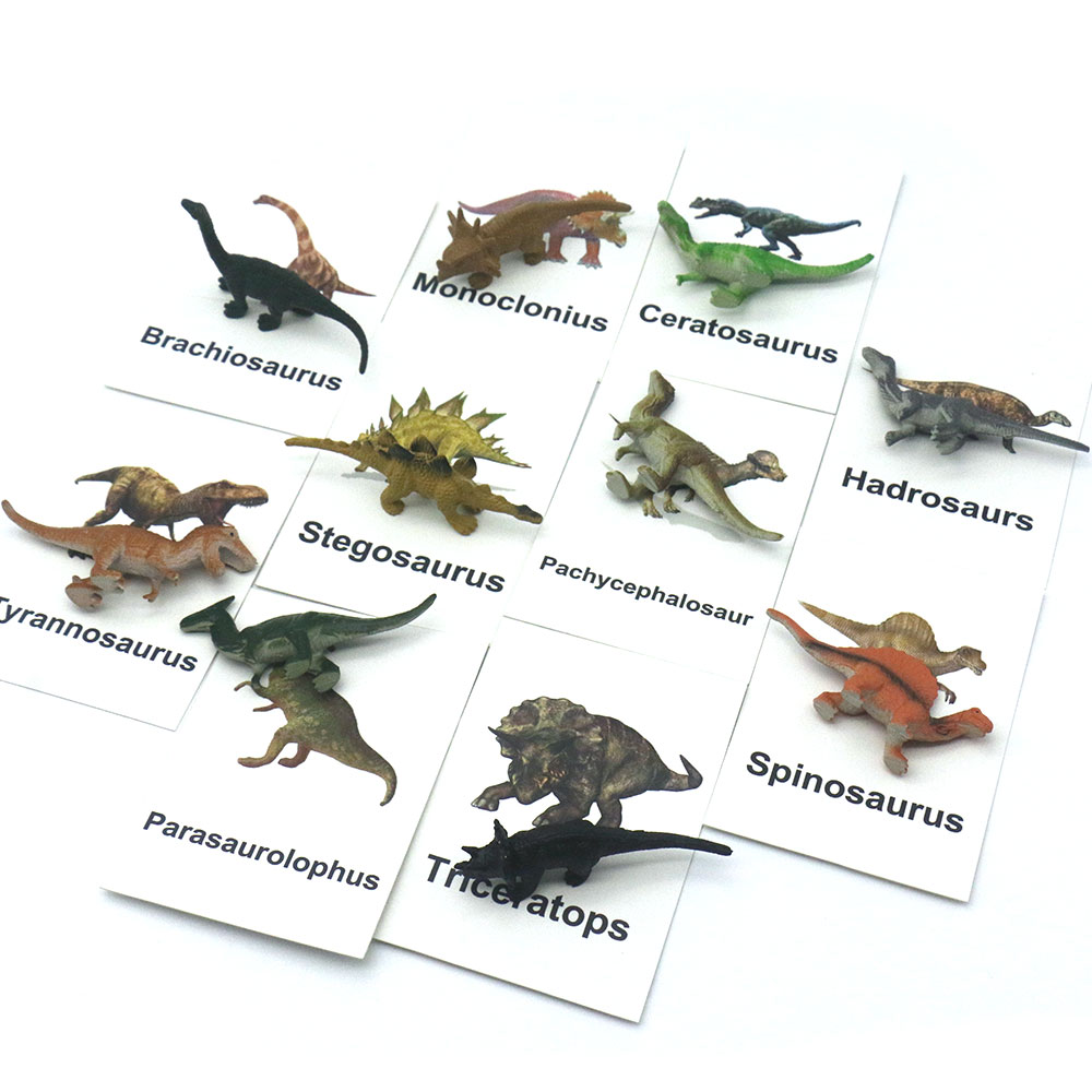 Montessori Language Materials Dinosaur Matching Cards Educational Toys For Children Words Learning Juguetes Montessori F2744H