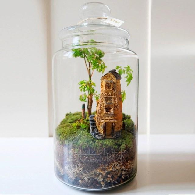 Micro Mini Home House Moss Sketch Secret Garden Landscape