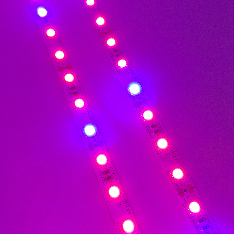 LED բույսերի աճող լույս 5050 LED ճկուն - Մասնագիտական լուսավորություն - Լուսանկար 2