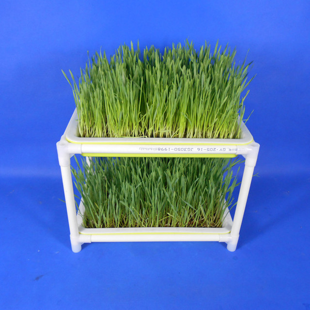 Plastic Hydroponics Nursery Pots Garden Seeds Sprout Tray Support