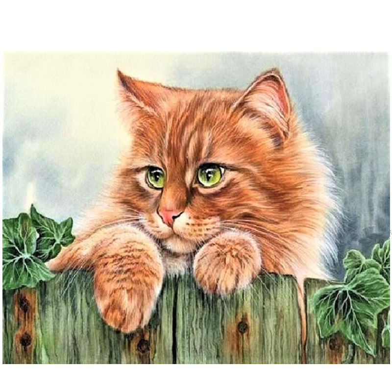 DIY PBN Arcylic Painting Lovely Cats Pictures By Numbers On Canvas Framed Wall Pictures Art For Living Room Home Decoration