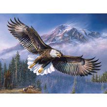 Full Square/Round Drill 5D DIY Diamond Painting Eagle flying Embroidery Cross Stitch  Home Decor Gift