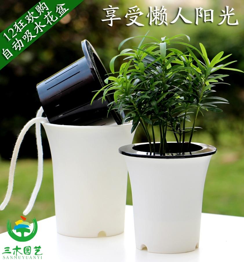 Ավտոմատ ծծող ծույլ ծաղկամաններ խեժի իմիտացիա կերամիկական սպիտակ բազմամյա մսային ծաղկամաններ հիդրոպոնիկ կանաչ բույսեր potted բույսեր