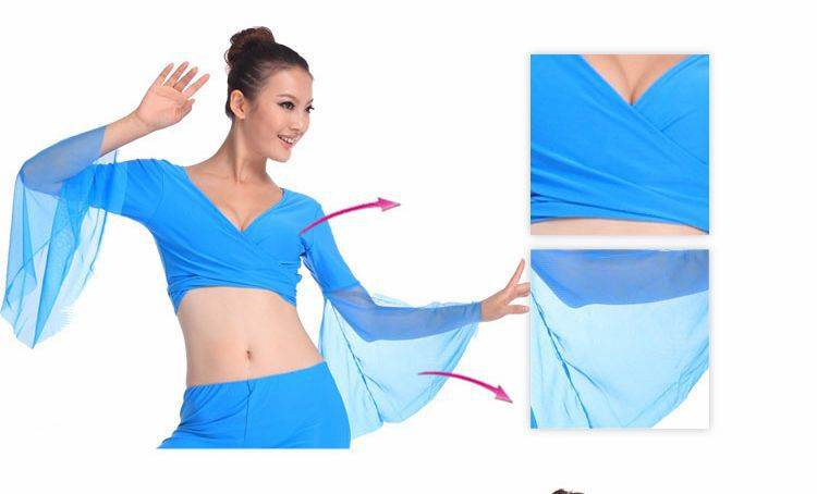 Belly Dance Tops For Women Belly Dancing Costume Dress Hot Popular Sexy Women Chiffon Lake Blue On Sale