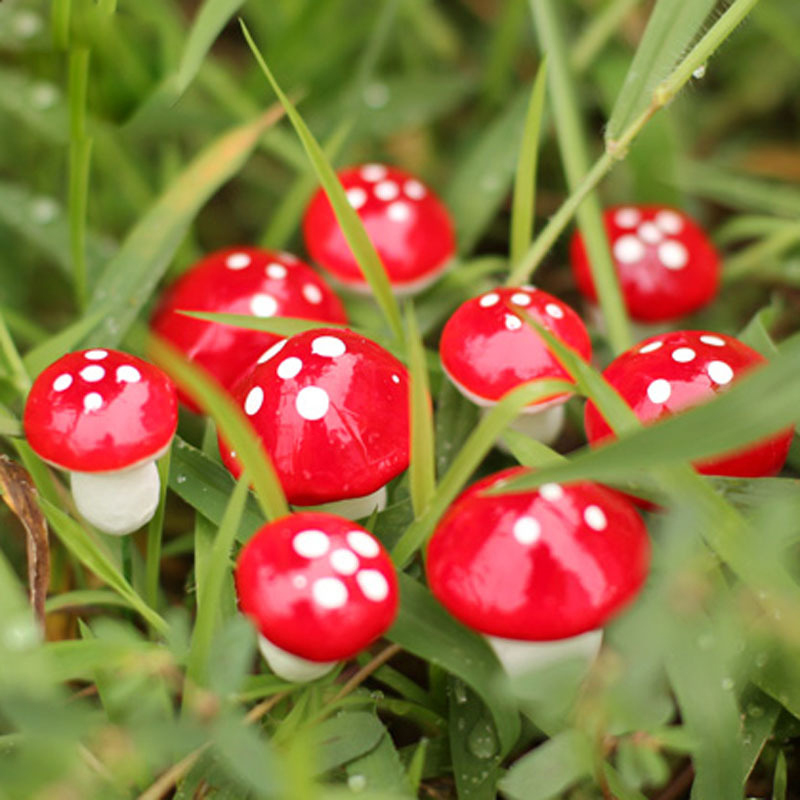 <font><b>50</b></font> Pcs 2cm/3cm Artificial Mini Red Mushroom Miniatures fairy garden moss terrarium kawaii Decorations Stakes Craft For Home image