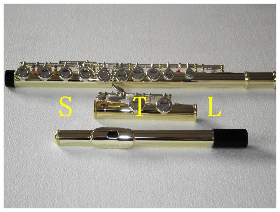 New 16 closed hole flute C key Gold lacquer Body with Silver plate Keys
