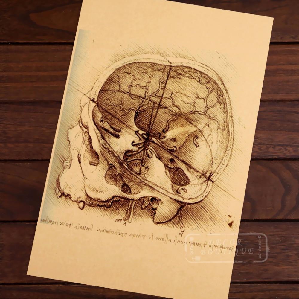 Human skull anatomy Leonardo Da Vinci Painting Art Vintage Retro ...