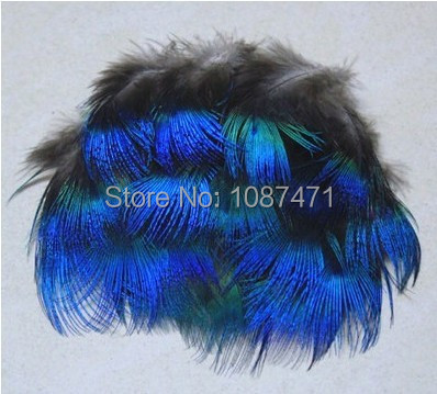 200pcslot 3-6cm Beautiful royal blue color natural real peocock hackle plume feathers jewelry crafts acceories making bulk sale