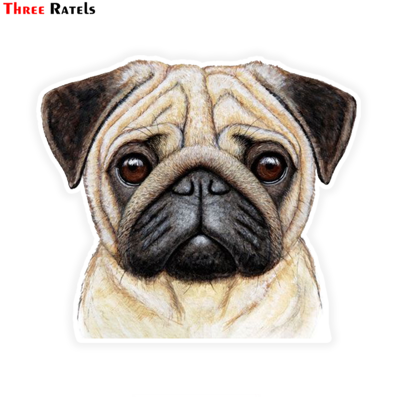 Three Ratels LCS300# 13x11.5cm Pug Colorful Car Sticker Funny Car Stickers Styling Removable Decal