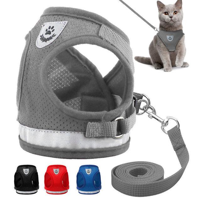 Del Gatto del cane A Piedi Giacca Harness Guinzaglio Animali Domestici Cucciolo
