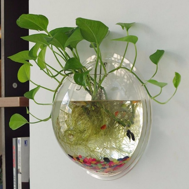 Mini Fish Tank Wall Mounted Bowl Acrylic Fish Tank Bowl Bubble Aquarium  Hanging Terrarium Goldfish Betta