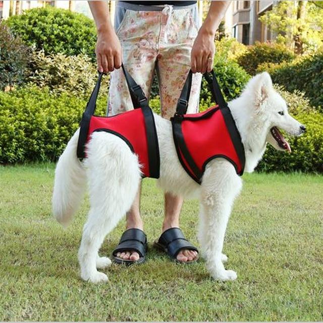 Old Age Pet Dog Walking Help Protection Harness Belt , Older dog and