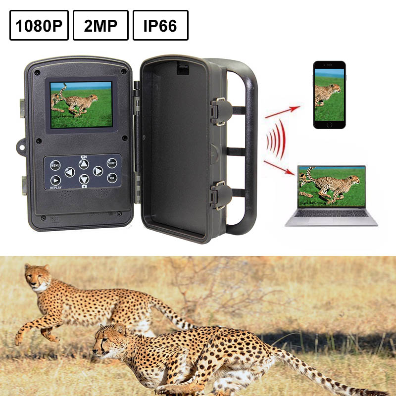 Night Infrared Camera RD1000SA HD 1080P Outdoor Real Scouting Hunting Trail Game Video Camera Wild Life Animal Hunting night infrared camera d3 big eye 16mp hd 1080p outdoor scouting hunting trail game video camera wild life animal hunting