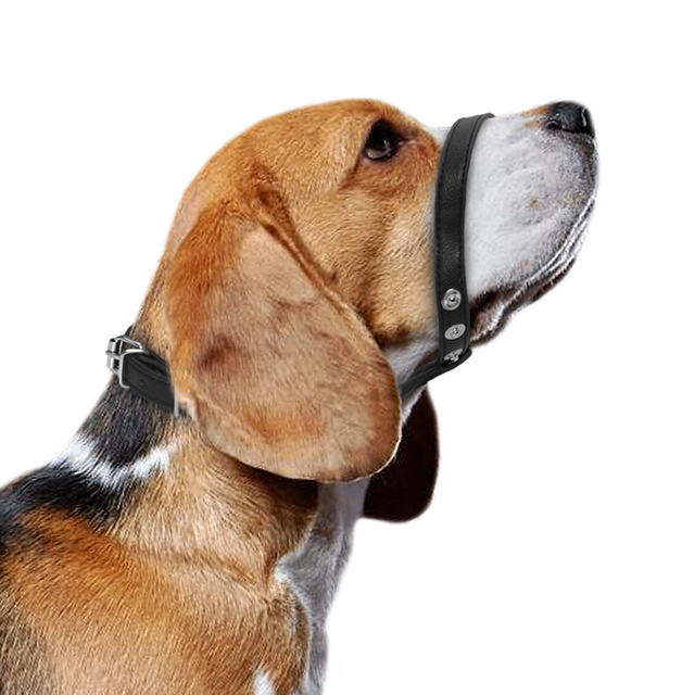 Regolabile In Pelle Animale Domestico Cane Museruola Pet Maschera Bark Bite Bocca Muso Attrezzi strigliatura e tolettatura Testa Cani Collare Per Le Piccole Medie Cani di Taglia Grande