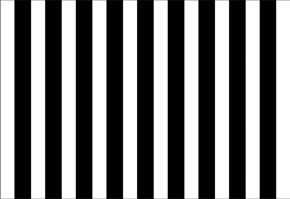 Zwart Wit Vinyl : Ft verticale zwart wit strepen muur custom fotostudio