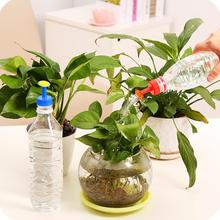 Bottle Top Watering Garden Plant Sprinkler Water Seed Tools Watering Sprinkler Portable Household Potted Plant Waterer 8 14 cheap Water Cans Plastic