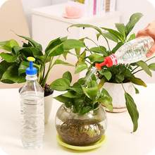 Bottle Top Watering Garden Plant Sprinkler Water Seed Tools Watering Sprinkler Portable Household Potted Plant Waterer 8.14(China)