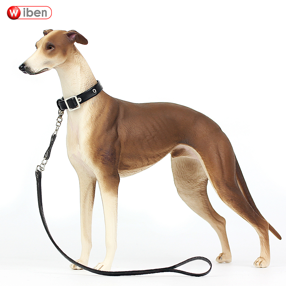 Wiben hot toys Pet dog Greyhound Simulation Animal Model Action & Toy Figures Classic toys for Children Gift Collection balloon dog 4dmaster animal model action toy figures by jason freeny naked dog art can see through the body dog for collection