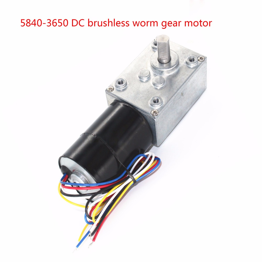 5840-3650 Brushless DC Worm Gear Motor, 12V24V Brushless Motor, Self-locking Braking Motor wholesale 5840 3650 brushless dc motor worm gear motor with 24v brushless motor for reversible 12 volt gear motor
