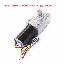 5840-3650 Brushless DC Worm Gear Motor, 12V24V Self-locking Braking Motor